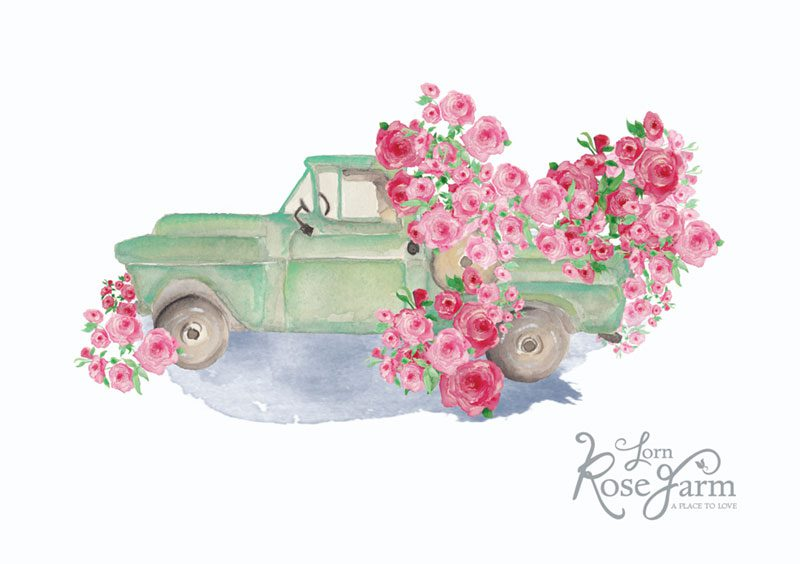 Illustration by Amanda O'Bryan, Creative Queen Bees for Lorn  Rose Farm