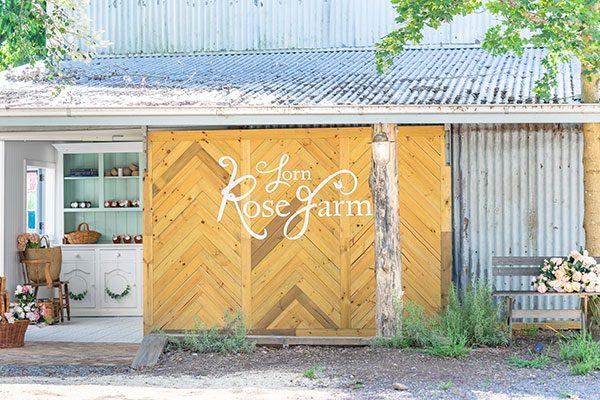 Lorn Rose Farm Barn Door Signage by Amanda O'Bryan Creative Queen Bees