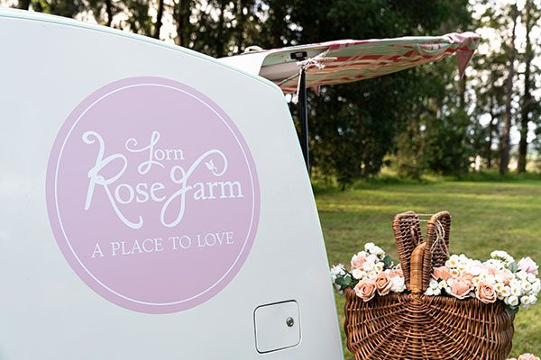Lorn Rose Farm Car Signage by Amanda O'Bryan Creative Queen Bees